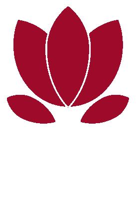 FBS intercultural communication